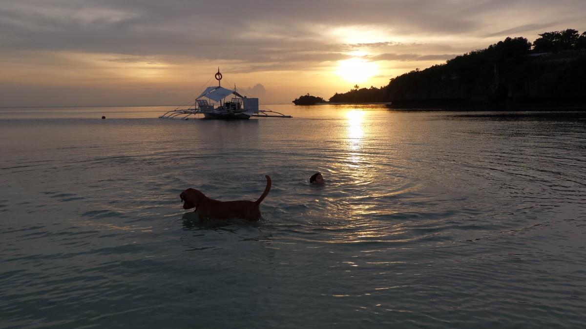Light Stalking Camotes Island