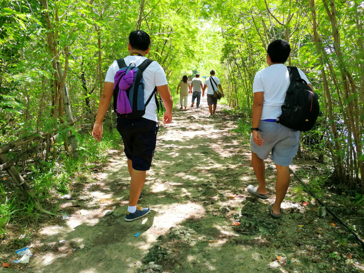 Danao City Mangrove Boardwalk