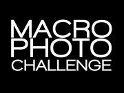 Macro Photography Challenge