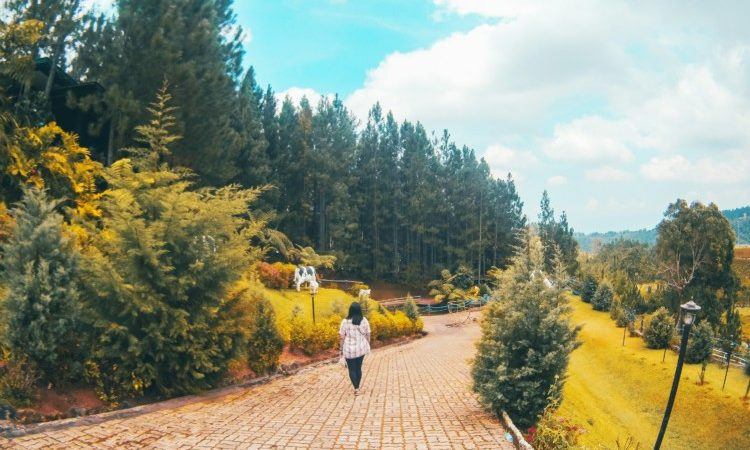 Cagayan de Oro Guide: Where to Stay and What to Do