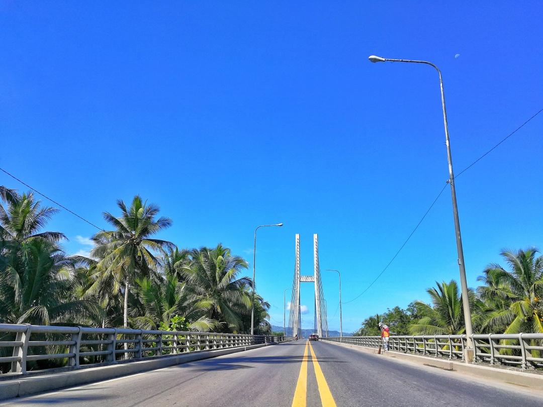 Diosdado Macapagal Bridge