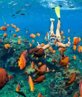 Four Top and Easy Tips for Snorkeling Beginners